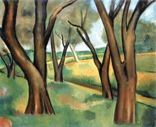 Trees at Cagnes Andre Derain 1910
