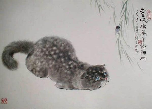 gu-yingzhi-cat